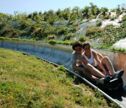 Parc attraction Bretagne : Bob's