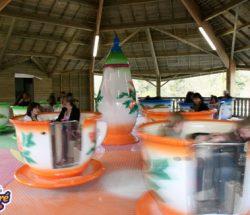 Parc attraction Bretagne : les tasses