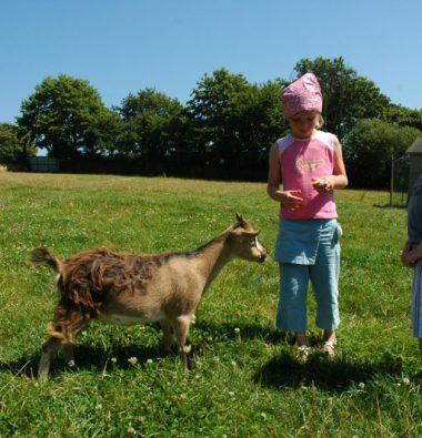 mini ferme à Milizac en Bretagne