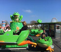 Parc en Bretagne animation pour les petits : grenouilles